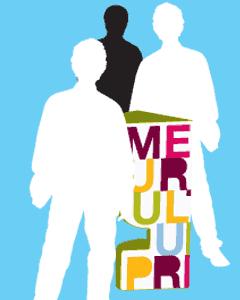 branding, ontwerp sta tafel Mercure Cultuurprijs