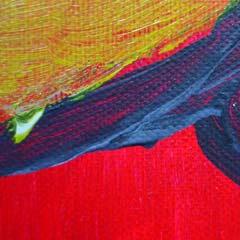 detail schilderij 'zeehond' kunstschilder Carmen Nutbey