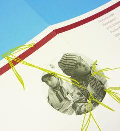Vormgevingsconcept visual design boek Twynstra Gudde carmen nutbey amsterdan