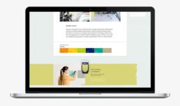 visual design webdesign ui akzo nobel dulux flexa carmen nutbey nutbeydesign amsterdam