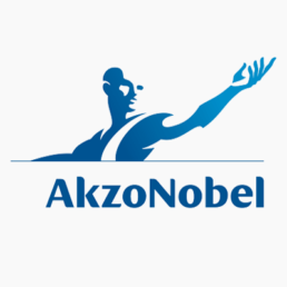 akzo nobel freelance visual designer carmen nutbey nutbeydesign ui ux user interface design amsterdam