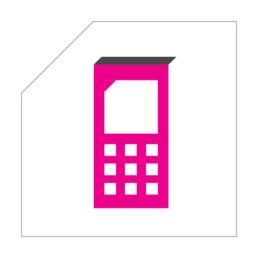 Corporate pictogrammen - iconen - symbolen - Designer Ontwerper Vormgever - Carmen Nutbey - NutbeyDesign - Specialist